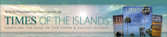 Turks-and-Caicos-Resorts-Hotels-Villas
