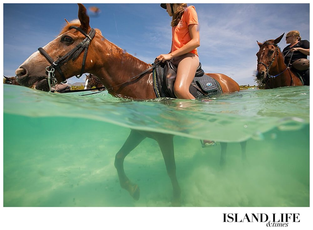 Ride-on-a-Pony-in-the-Surf