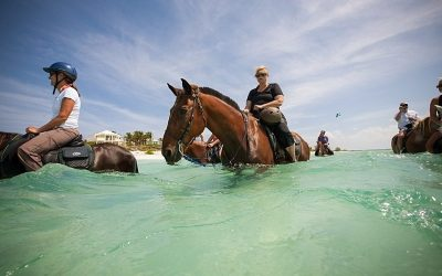 Horseback Riding in Grace Bay Providenciales … what a treat