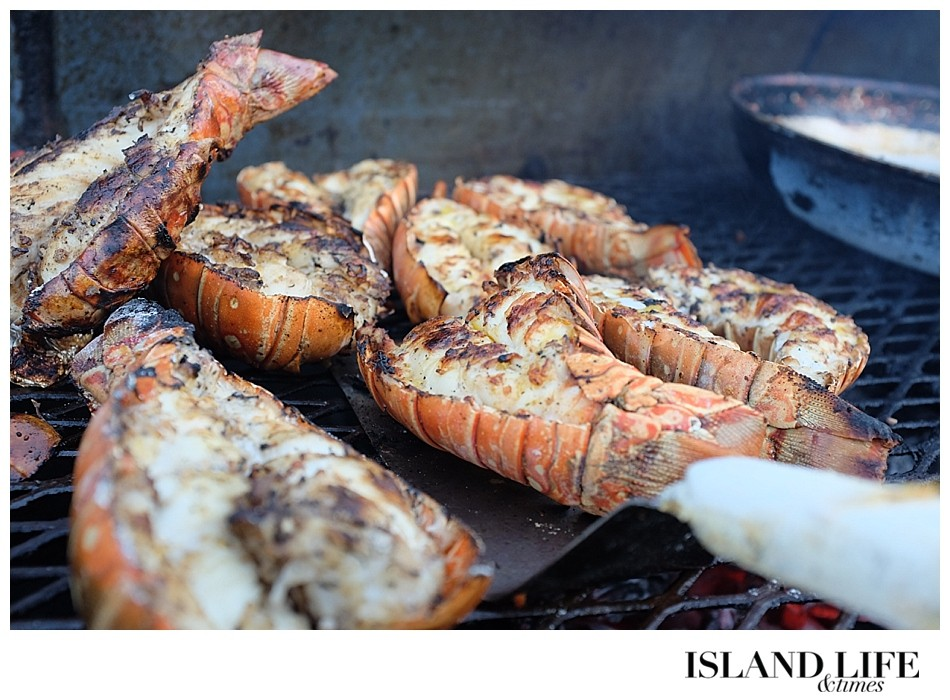 turks and caicos lobster