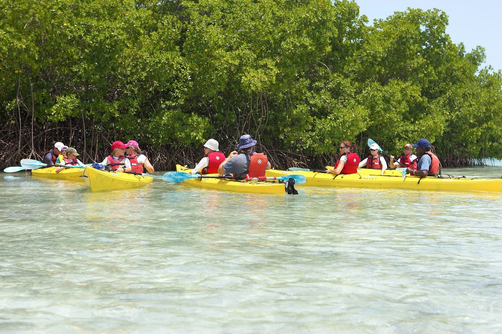 caicos kayaking