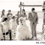 turks-and-caicos-wedding