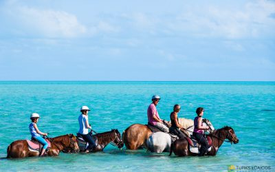 Sample Itinerary: Turks & Caicos Family Vacation